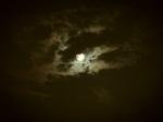 旧盆の十五夜の小望月