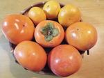 伊勢原土産の蜜柑と富有柿