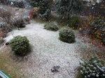 11月初雪 2016.11.24