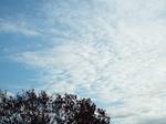 2016.12.03 朝の空