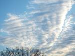 今朝の東空