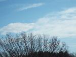 高層雲の空に晴れ間