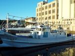 北運河に係留されているイカ釣り船