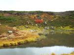 水と岩と紅葉の饗宴