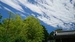 青い空と白い雲緑の竹林