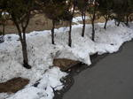 我が団地の雪