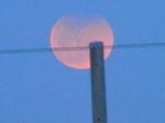 月出帯食(18時25分頃)
