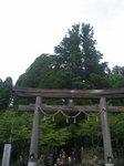 戸隠神社中社の鳥居と三本杉