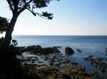立石からの相模湾