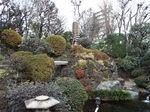 東覚寺・回遊式庭園