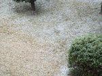 2019.02.09 09:50 積雪始め