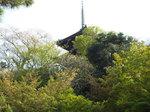 桜と新緑の三重塔