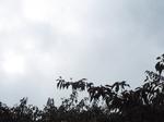 2019.09.03 19:20  雷雨の空