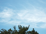 巻層雲棚引く秋の日