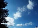千切れた高層雲・浮浪雲