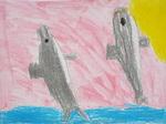 秋の遠足・江ノ島水族館・イルカのジャンプ