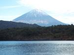 西湖の富士
