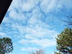 ひつじ雲(高積雲)
