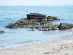 岩礁と砂の海岸
