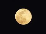 旧暦弥生の十六の月 十六夜の月・望(満月)