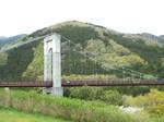 新緑の戸川公園