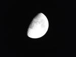 旧暦卯月の十 十日夜の月 2020.05.02 23:03