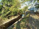 渋田川河畔の太田道灌墓所