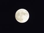 旧暦葉月の十五 十五夜の月・中秋の名月 2020.10.01 18:04