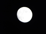 2018旧暦弥生の十三夜の月
