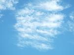 秋の雲(高積雲乃至巻積雲)