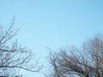 2021.02.23の快晴の朝の空
