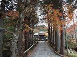 箱根長安寺の参道