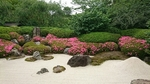 明月院枯山水庭園