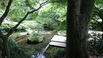 裏庭園の池
