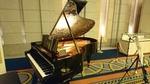 ベーゼンドルファーピアノ、世界25台限定機