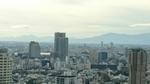 箱根山(左)と大山