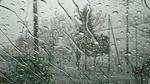 横浜大雨警報