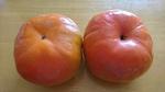伊勢原産の柿