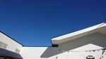 快晴の青い空・横浜南部市場で・2021.02.09