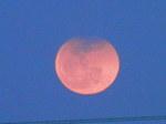 月出帯食(18時28分頃)