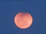 月出帯食(18時30分頃)