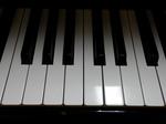 ピアノ鍵盤(33Fから45F)