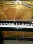 ピアノと新しい巻き線