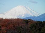 世界文化遺産・富士