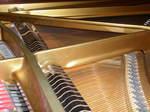 ピアノの中枢